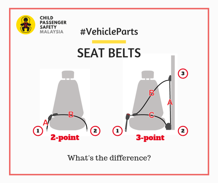 2-point & 3-point Seat Belts